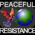 Peaceful Resistance was formed to show the relationship between consumerism, corporate misuse, environmental issues, and governmental controls of freedom.